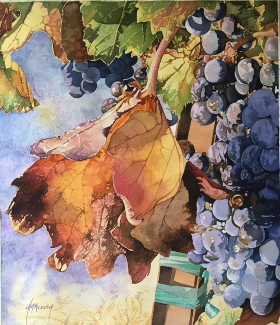 Watercolor #2 – Vineyard Series