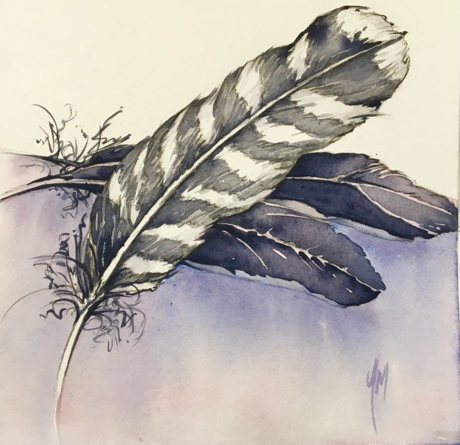 #16 Gathering Feathers