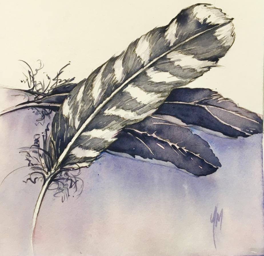 #16 Gathering Feathers