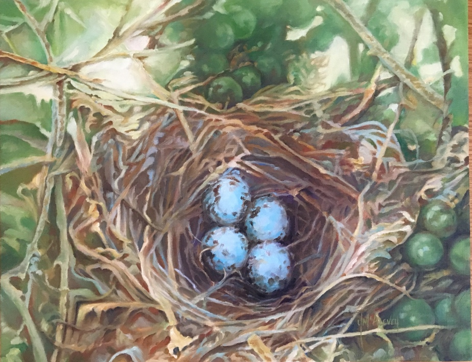 Nest In The Vine